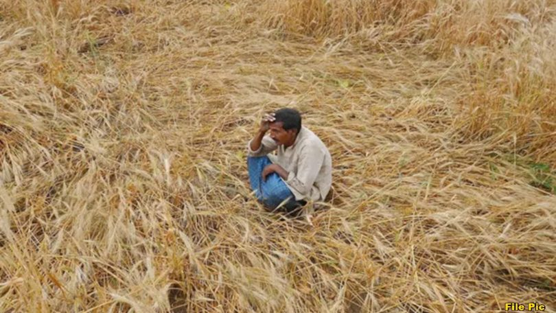 machalpur farmers issues