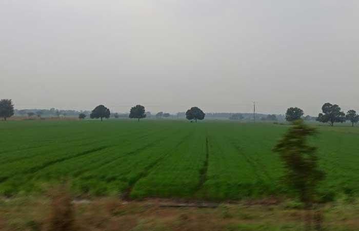 dhar-farmers