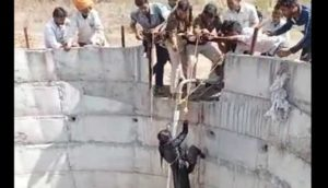 ratlam-selfie-girl-fell-into-well