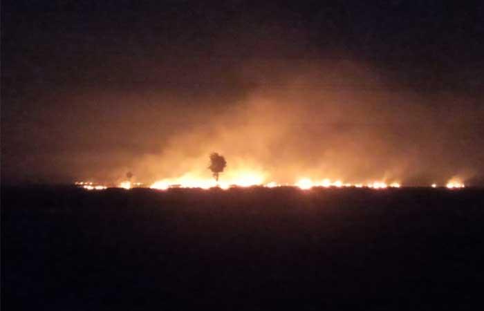 dhar narwai burn