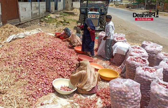 onion-dhar