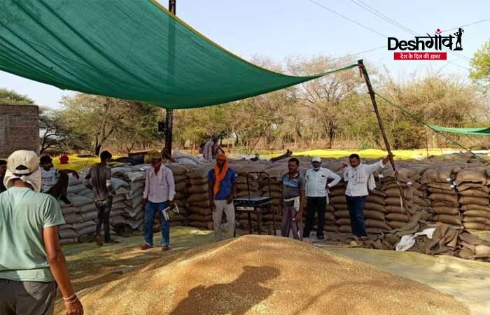 wheat-procurement-dhar