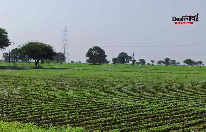 dhar-field